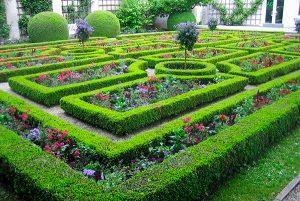 progettazione labirinti verdi
