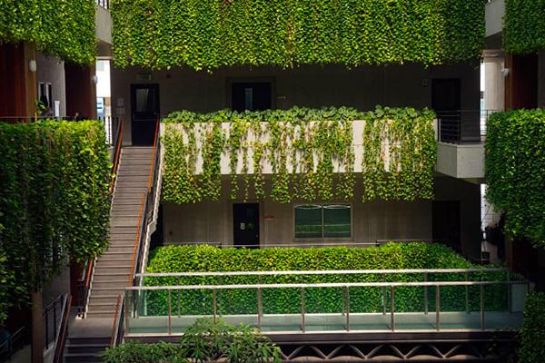 Garden designer giardini pensili